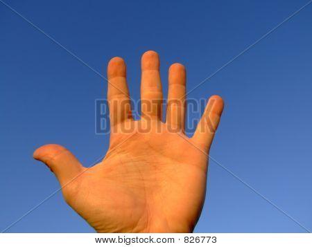 Hand series : open