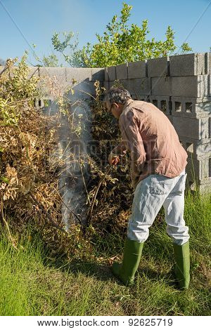 Burning Pruning Waste