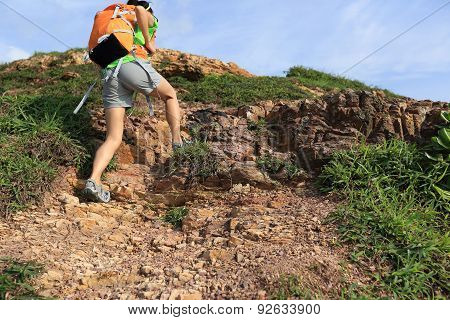 young woman backpacker climbing to mountain peak poster