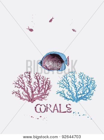 Vector illustration of sea corals and tropical fish