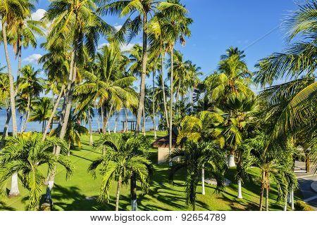 Philippines Garden Resort