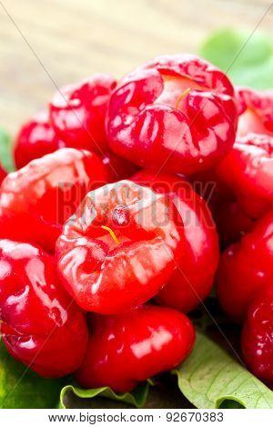 Fresh Vivid Red Rose Apple 'plastic Daenga'