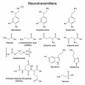 Structural chemical formulas of basic neurotransmitters, 2d vector, eps 8 poster