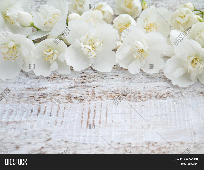 White english dogwood image photo free trial bigstock white english dogwood flowers on the rustic rough painted background izmirmasajfo