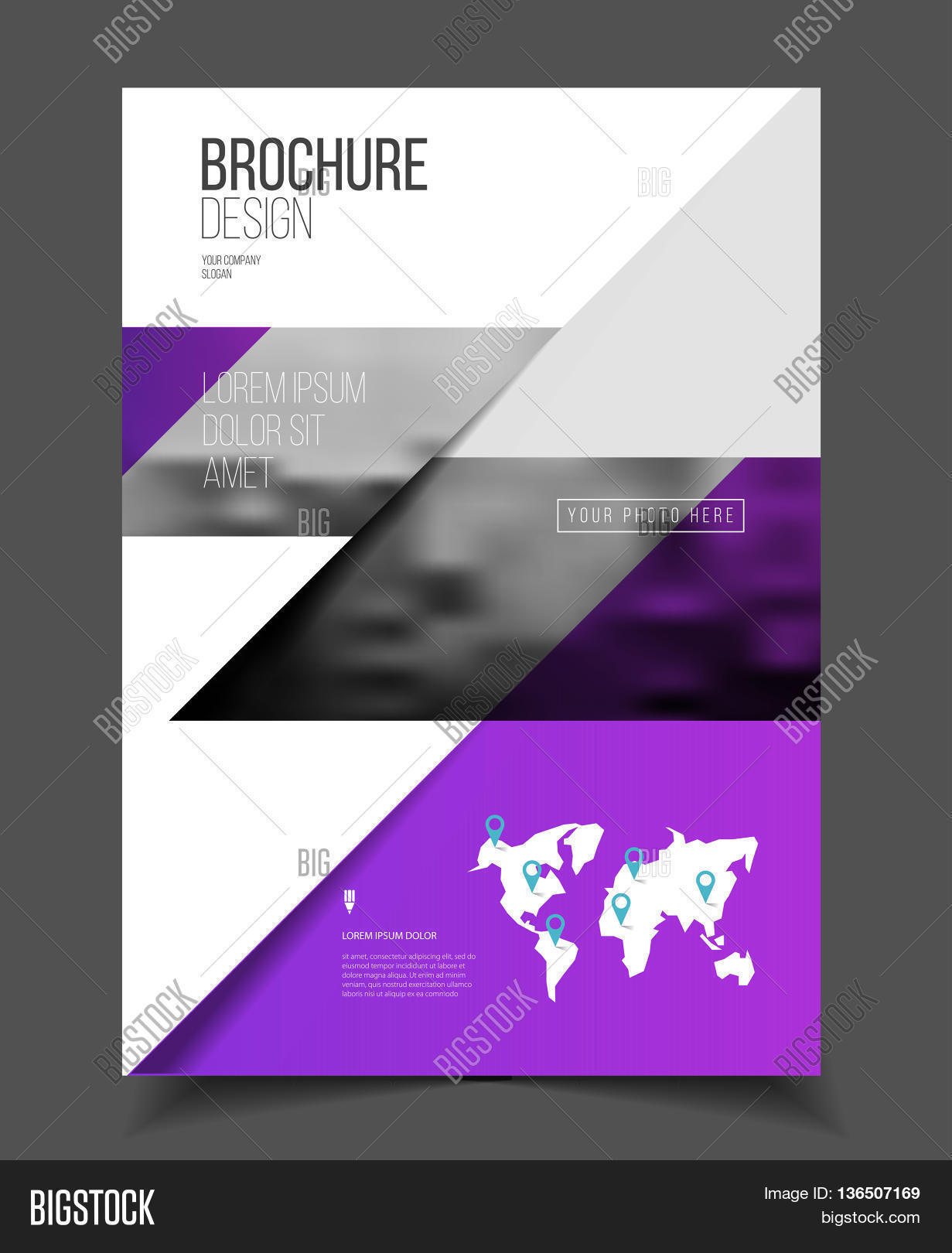 catalogue cover vector photo free trial bigstock