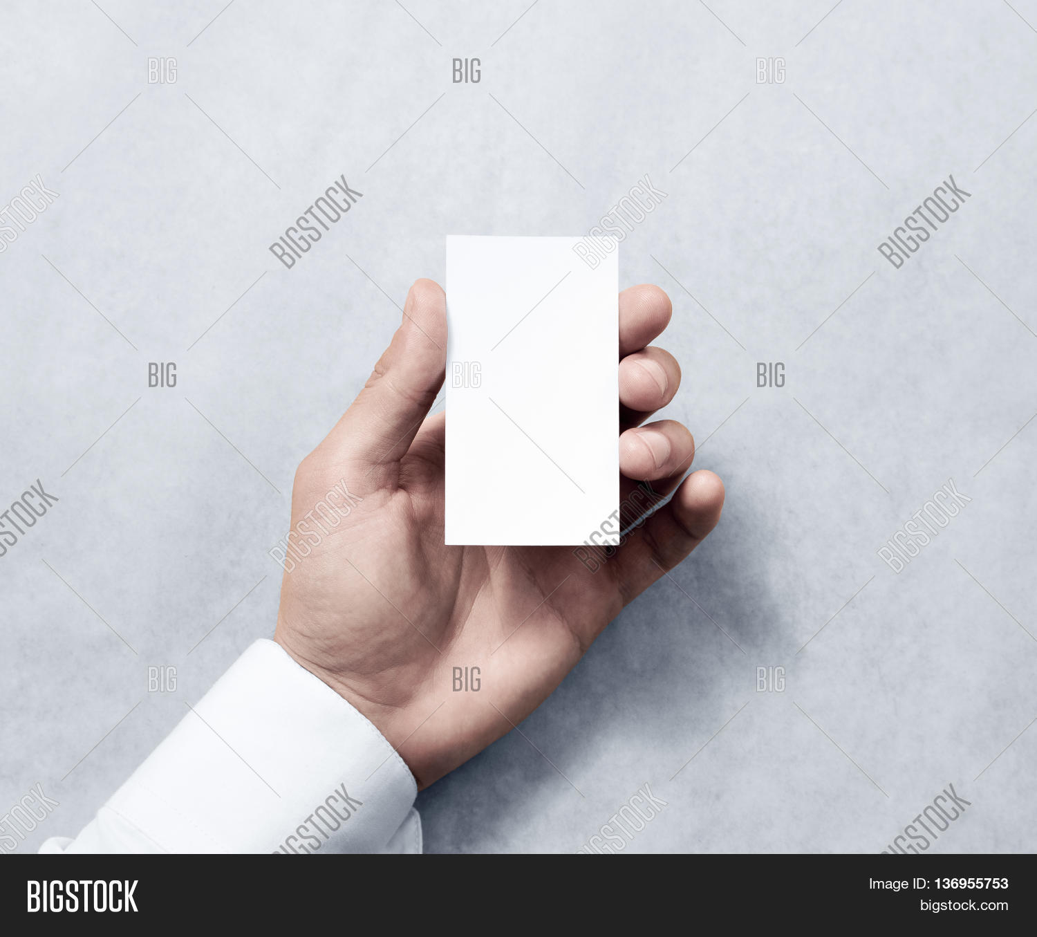 Hand Holding Blank Vertical White Image & Photo | Bigstock