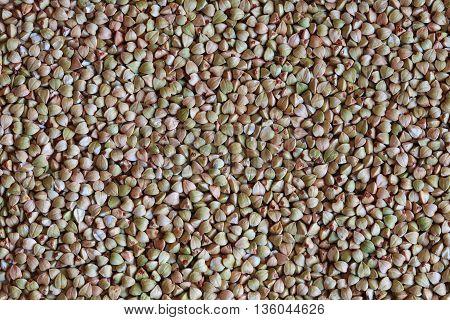 raw buckwheat grains, green buckwheat photo, buckwheat grains, buckwheat background, dry buckwheat, organic buckwheat, green buckwheat