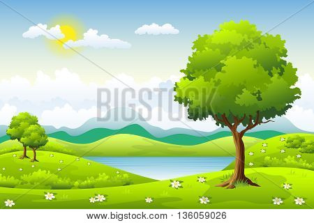 landscape in summer with trees and clouds