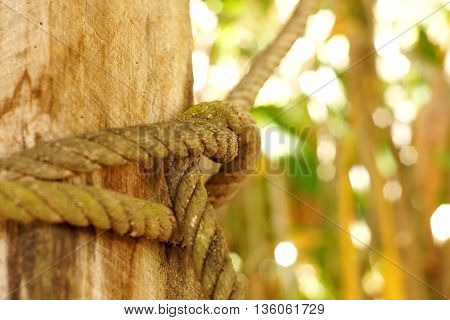 Old rope tie on the wood pole