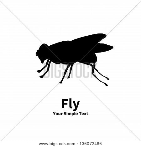 Vector illustration of a silhouette of a fly on an isolated white background. Fly side view profile. The insect lives in the house.