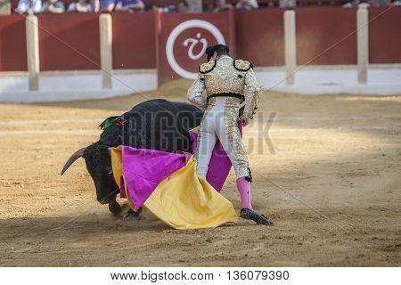 Ubeda Spain - October 1 2011: The Spanish Bullfighter Daniel Luque bullfighting with the crutch in the Bullring of Ubeda Spain