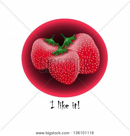 Realistic strawberry in round frame. Vector eps10