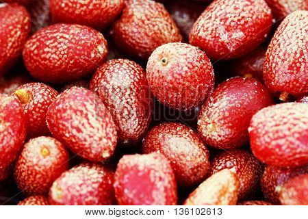 Goji berries frozen background close up macro phoro