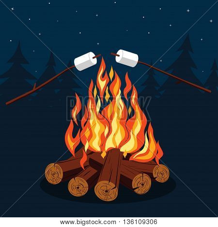 Bonfire with marshmallow - camping, burning woodpile in the night