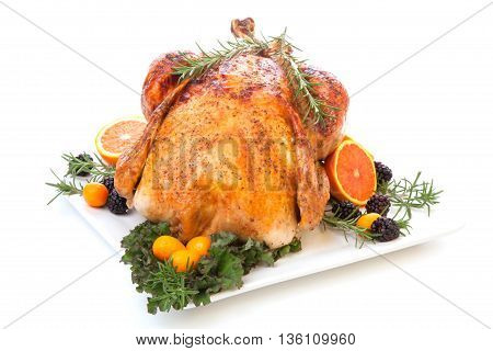 Stuffed Roasted Turkey On White