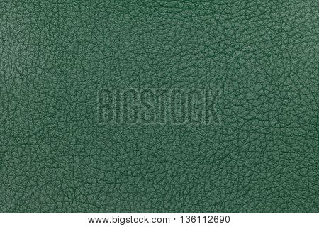 Light green leather texture background. Closeup photo. Reptile skin. The skin of a crocodile or a snake