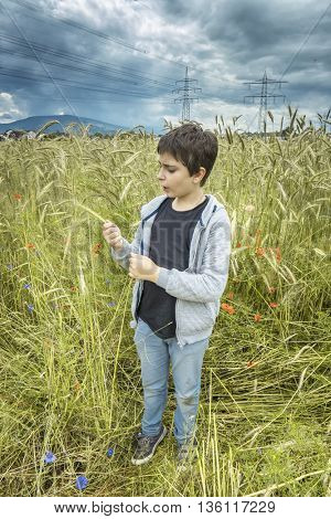 Portrait of a Boy in a wheat field on a cloudy day