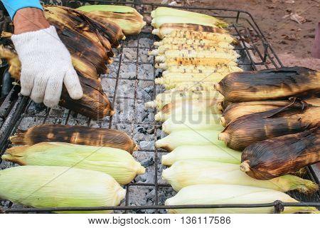 Grilled corn on the market. Merchants wear gloves before handling it It was hot.
