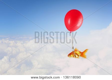 Goldfish fly on balloon . Mixed media