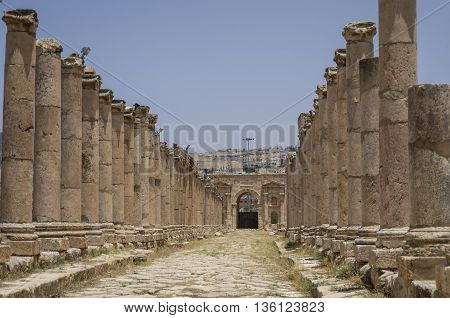 Columns in Colonnaded Street and North Gate at background Ancient Roman city of Gerasa of Antiquity modern Jerash Jordan