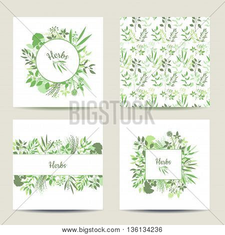 Set of four herbal card templates. Square cards vector illustration. Green round and square frame with collection of plants. Silhouette of branches isolated on white background