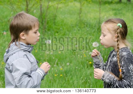 Boy And Girl Standing In Field Blowing Dandelions
