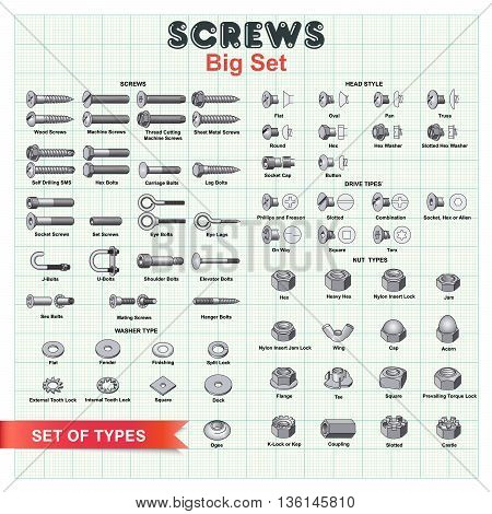 Big vector set building screws nuts and bolts on a background of millimeter paper. For installation works as a good example of tools and equipment.