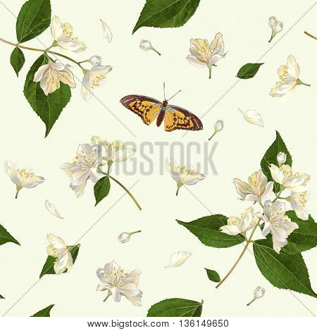 Vector seamless pattern with jasmine flowers. Background design for tea, aromatherapy, herbal cosmetics, essential oils, health care products. Best for fabric, textile, wrapping paper.
