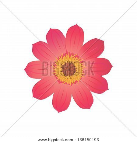Beauty flower design flat style isolated. Blooming red flower with big beautiful petals, summer or spring nature floral plant and graphic blossom exotic natural flora, vector illustration