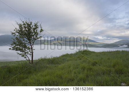 Fields near Castelluccio in Italy in early morning