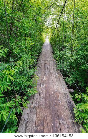 Little Old Wooden Bridge In The Village