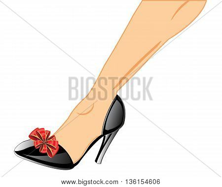 Feminine loafers on leg on white background is insulated