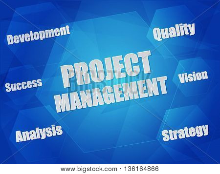 project management and business growth concept words in hexagons over blue background, flat design, vector