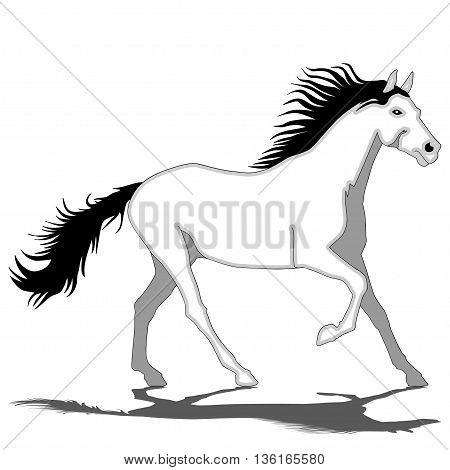 An illustration of a white horse galloping on a white background.