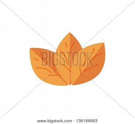 tobacco vector illustration. Tobacco smoke flat icon. nicotine leaves isolated on white background