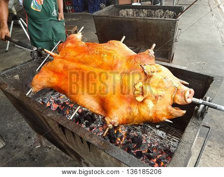 Pig on spit roasted pork grill meat