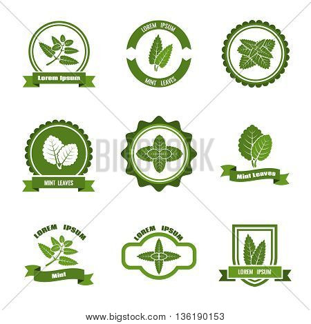 Mint leaves vector logos, label, emblems set. Mint logo, green mint label, leaf mint emblem illustration