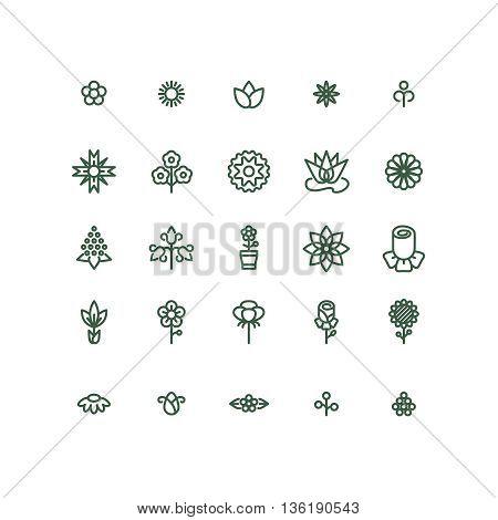 Flowers line vector icons. Flower plant, natural flower linear, flower icon illustration