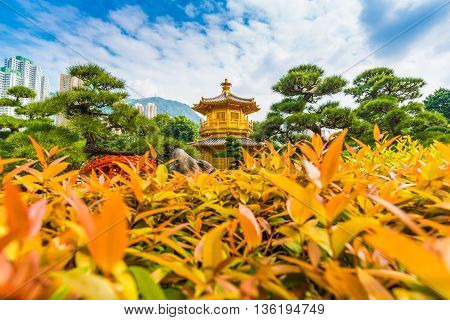 Golden Pavilion Of Absolute Perfection In The Nan Lian Garden With Tree Blue Sky