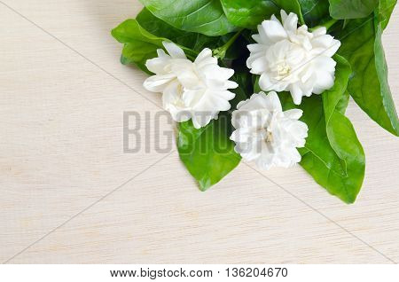 Jasmine (Other names are Jasminum Melati Jessamine Oleaceae) flowers isolated and grouped on wooden board background