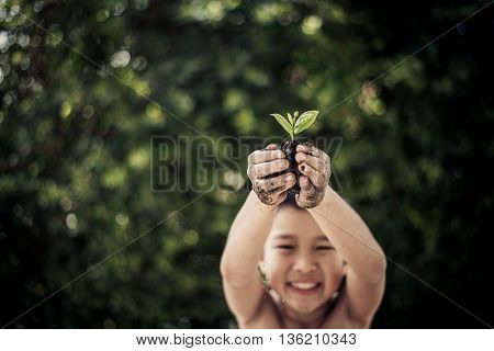 Plant In Boy Hand