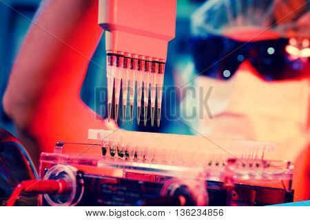 woman assistant in laboratory with multi pipette in the clinic, the research of cancer stem cells. Toned photo