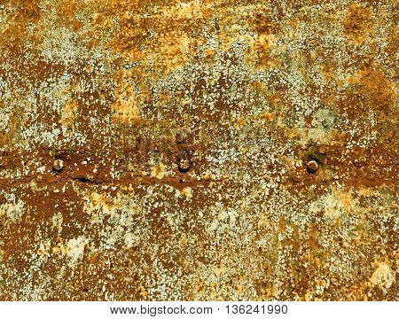 Rusty Color Metal Plate Surface