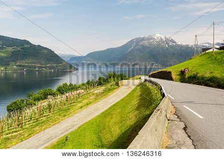 Landscape Near Hardangerfjord In Norway