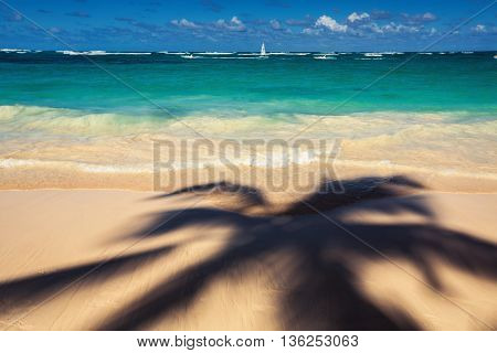 Palm trees shadow on the tropical beach Bavaro Punta Cana Dominican Republic