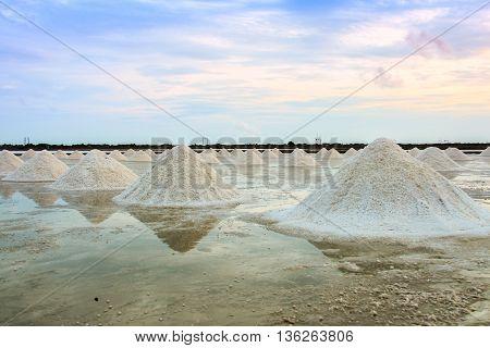 Landscape Of A Salt Farm