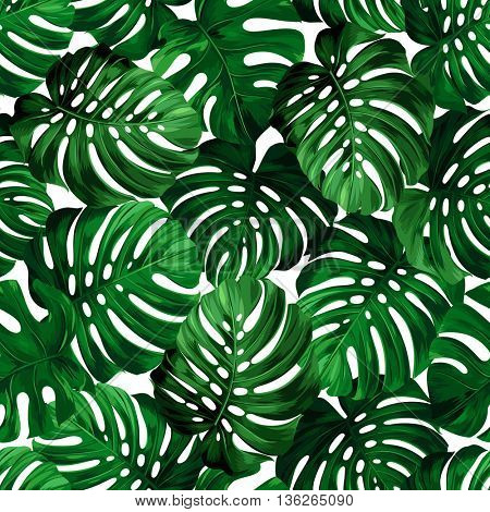Seamless pattern of big leaves monstera. Tropical ornament.