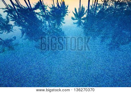 Reflection of coconut trees and sugar plam tree in deep blue color swimming pool