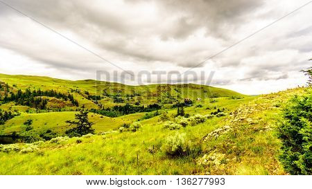 The Rolling Hills and Grasslands in the Nicola Valley near Merritt British Columbia under cloudy skies