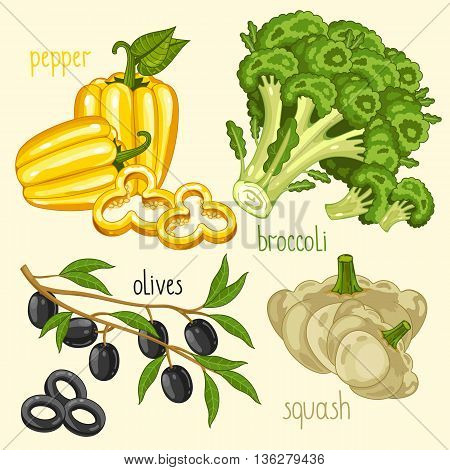 Set of vegetables mix. Vector pepper, broccoli and other vegetables. Natural organic. Ingredients for vegetables salad. Isolated pepper, broccoli and other vegetables.